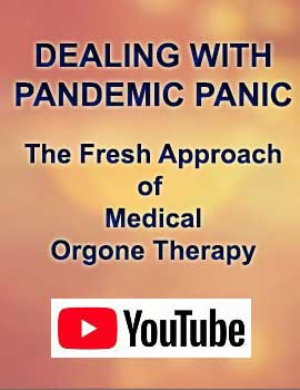 Dealing with Pandemic Panic